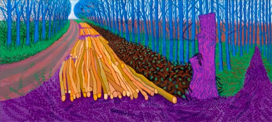 07 David Hockney Royal Academy surface and surface