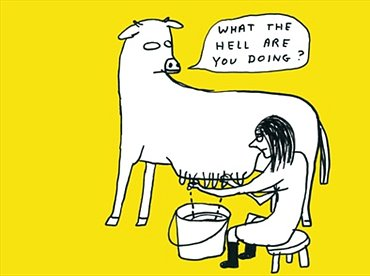 David Shrigley - Surface and Surface