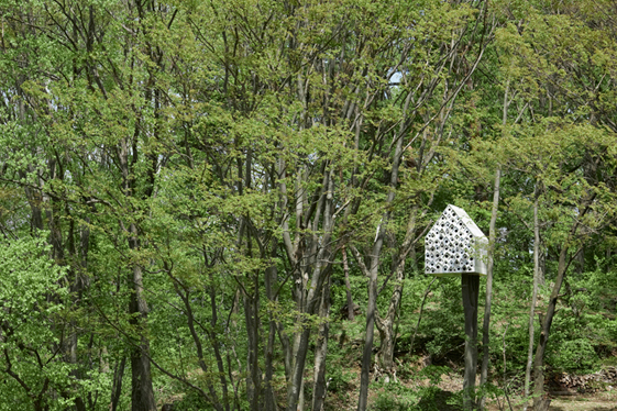 best bird house design plans