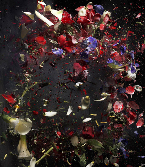ori gersht - surface and surface