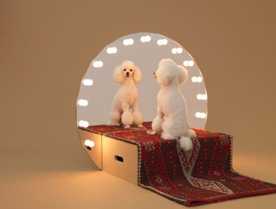 konstantin-grcic - architecture for dogs - surface and surface