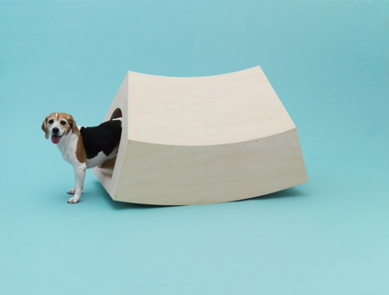 mvrdv - architecture for dogs - surface and surface