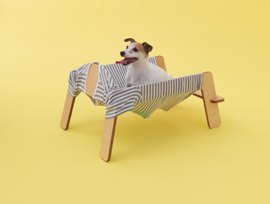 torafu - architecture for dogs - surface and surface