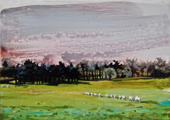 Ann Quinn - Surface and Surface
