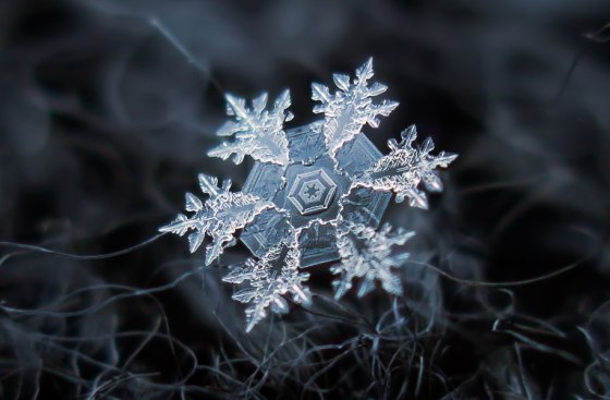 Alexey Kljatov - Macro Snowflake Photos - surface and surface