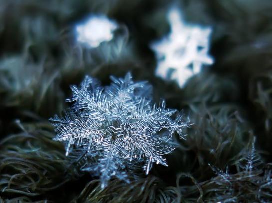 Alexey Kljatov - Macro Snowflake Photos - surface and surface