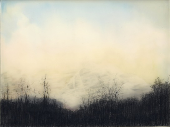 Brooks Shane Salzwedel - surface and surface